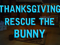 Thanksgiving Rescue The Bunny