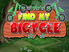 Find My Bicycle